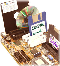 """Culture as the Software of the Mind"""